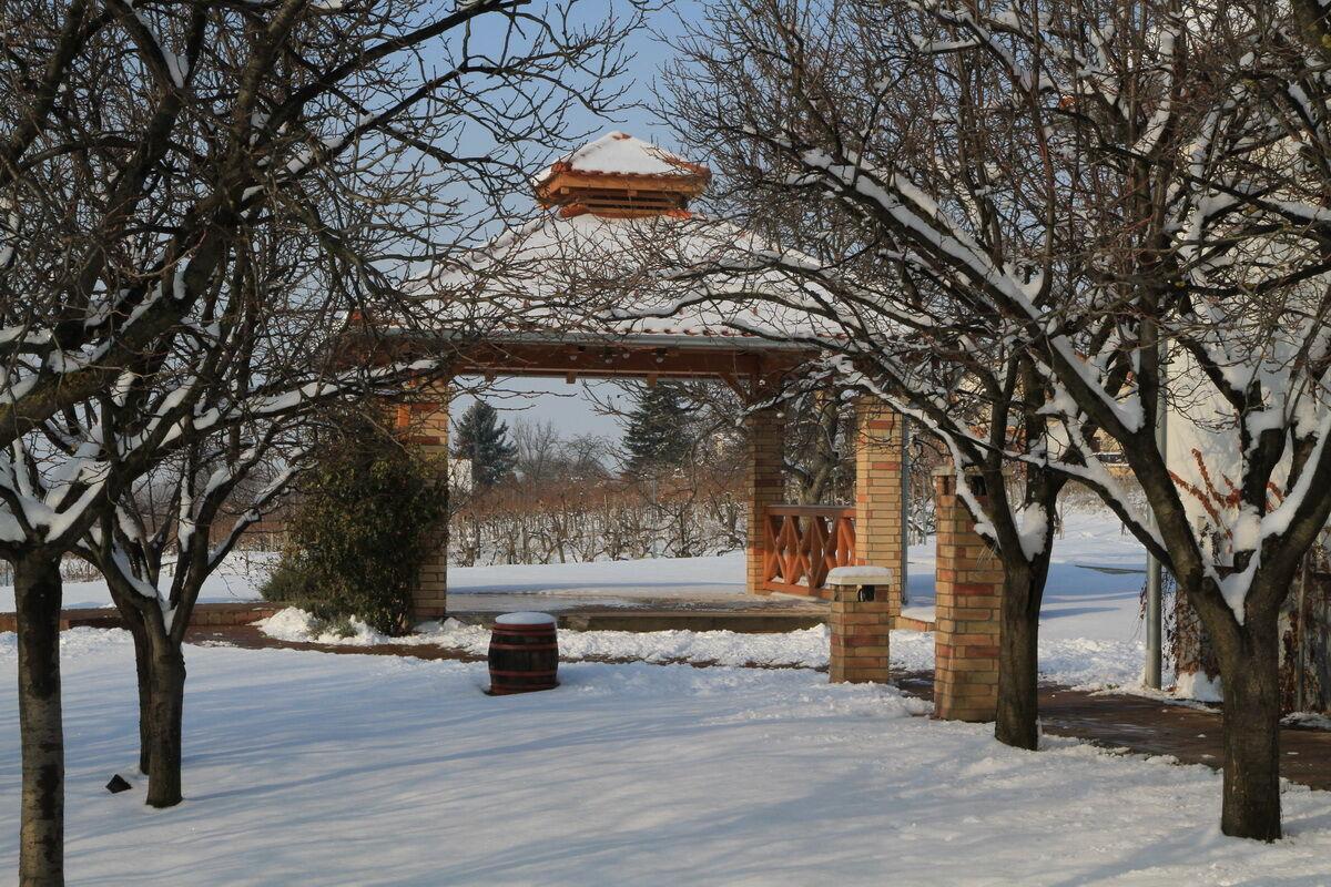 Tél a Kultpincében