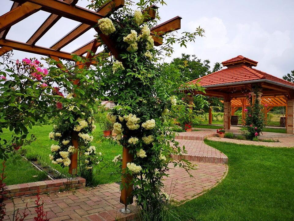 KultPince kertje májusban