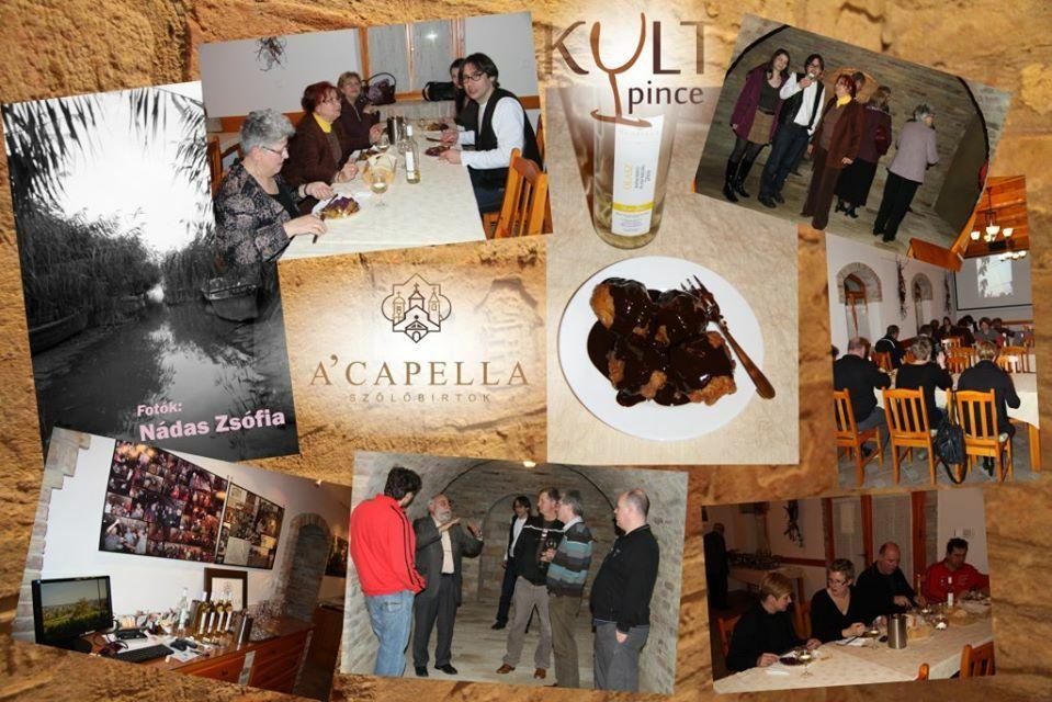 A'Capella Szőlőbirtok, borkóstoló a KultPincében