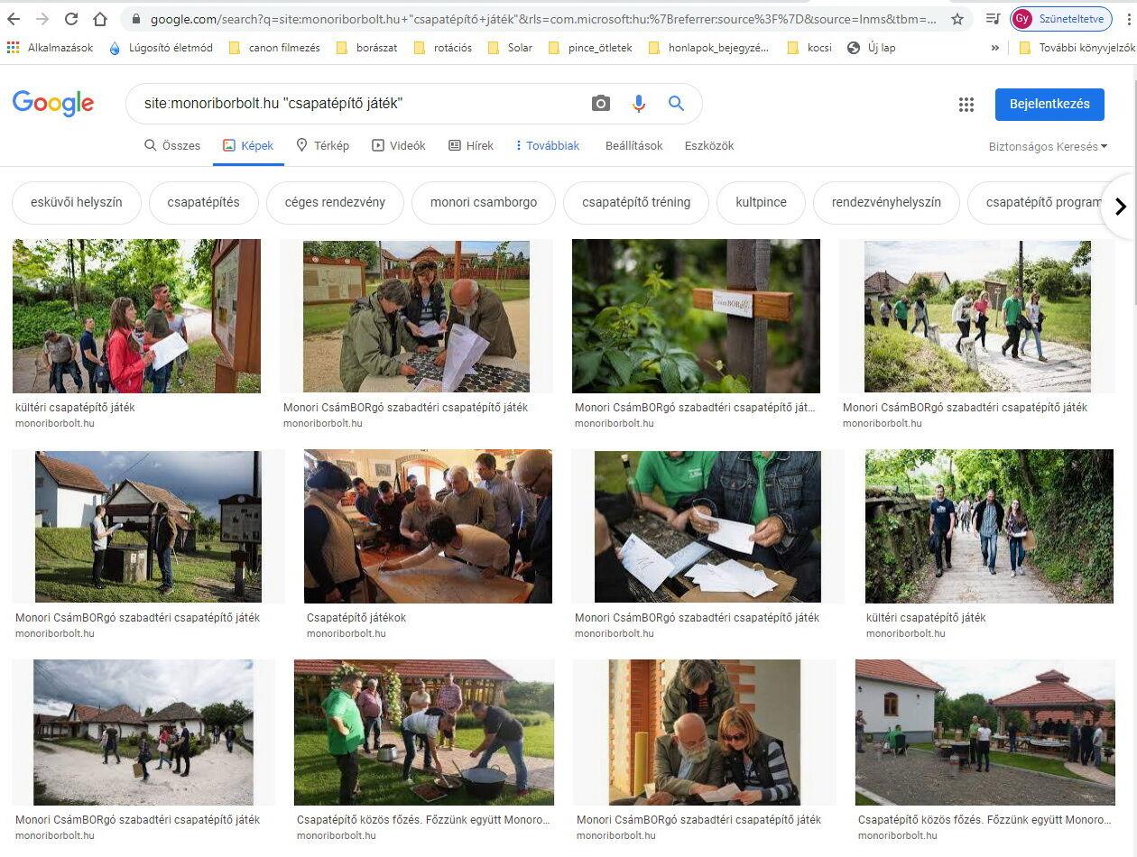 google keresés a monoriborbolt.hu teljes oldalán