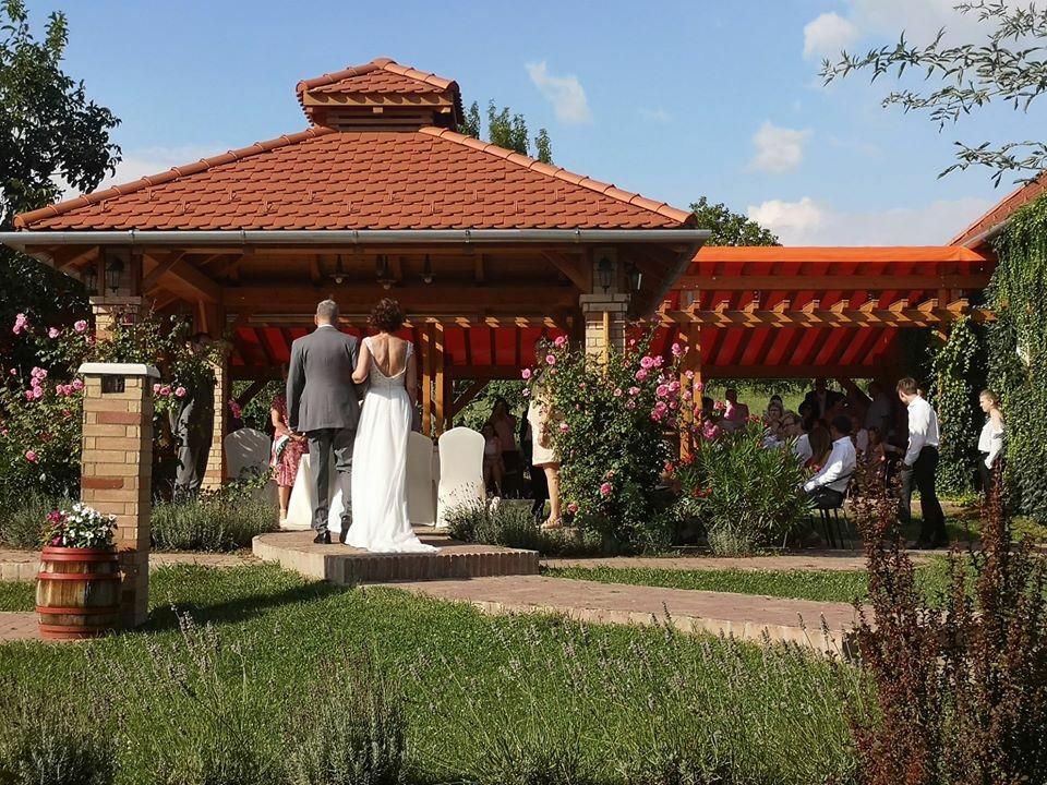 Esküvő és borkóstoló