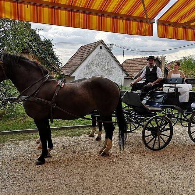 Esküvői hintó