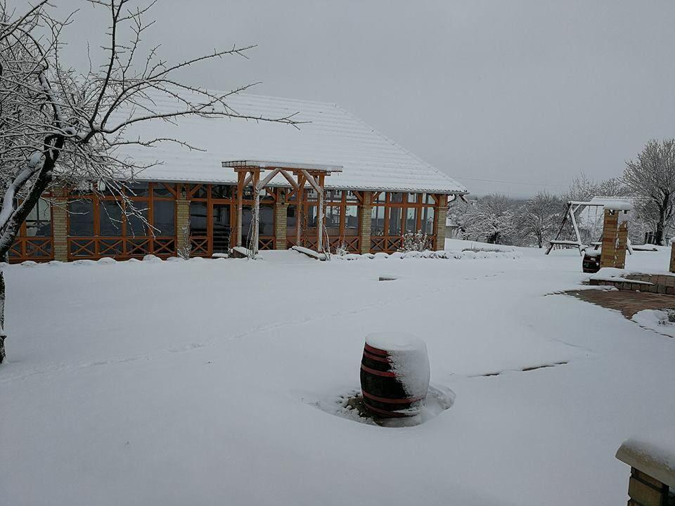 KultPince télen